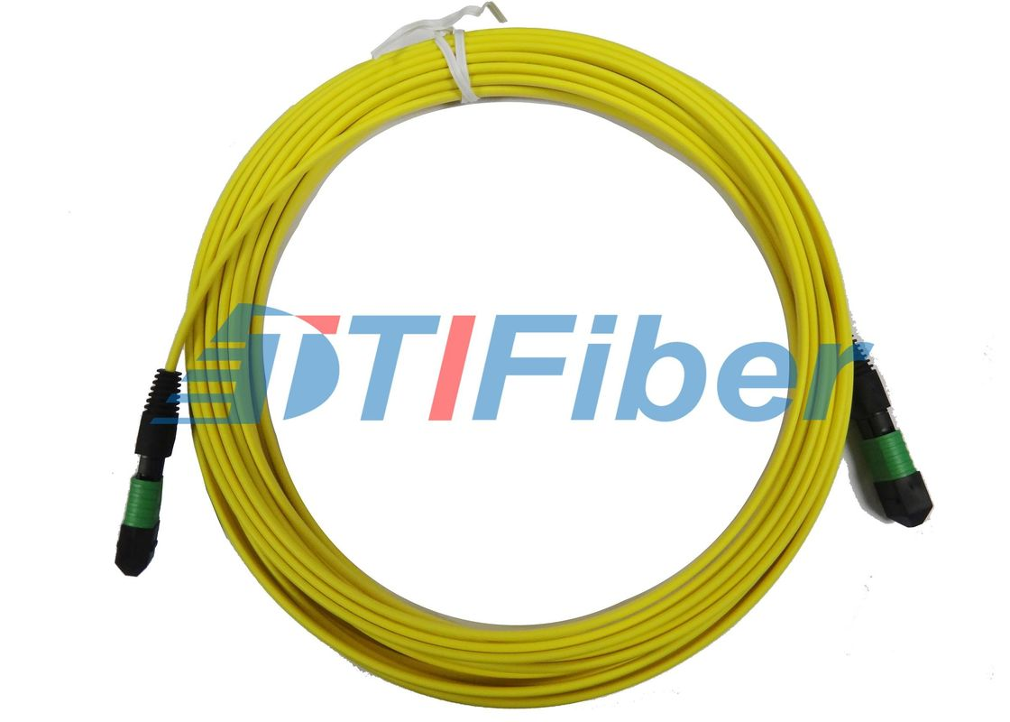 12 core MTP Fiber Optic Patch Cord with 3.0mm Round Fiber Cable
